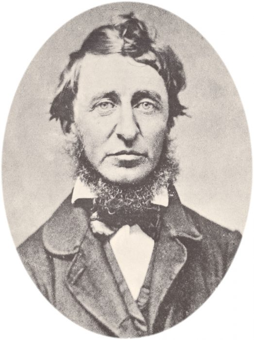 I 5 migliori libri di Henry David Thoreau: classifica